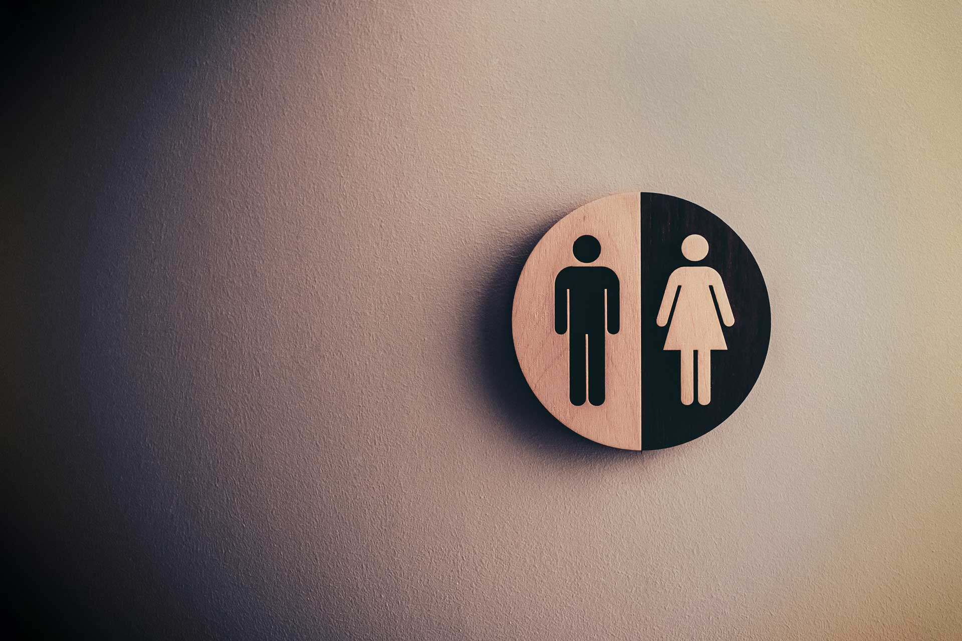 Gender Based Analysis Plus